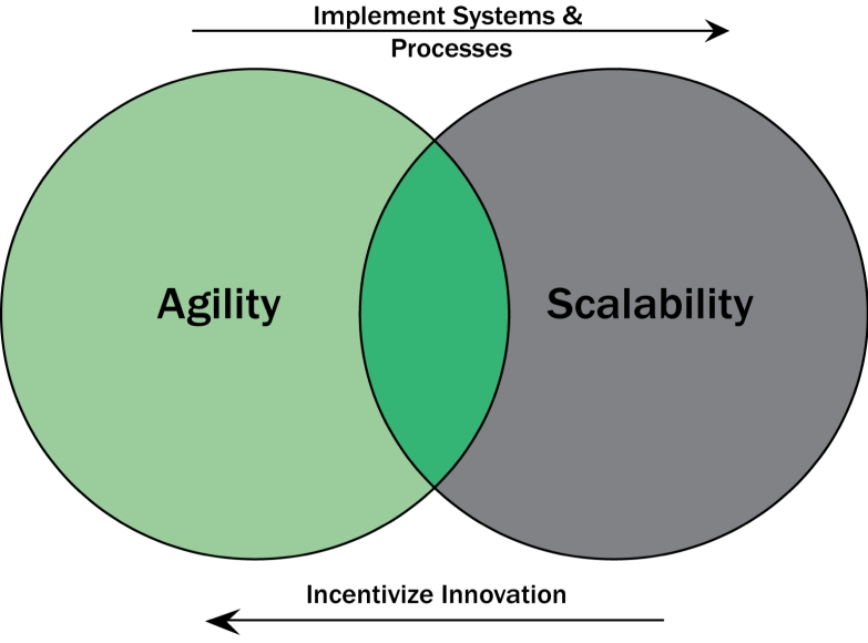 Implement Systems & Processes